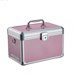 Pink aluminum cosmetic train box with removable tray for makeup artist